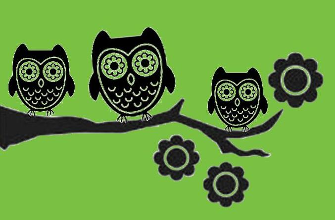 owls-on-branch-green